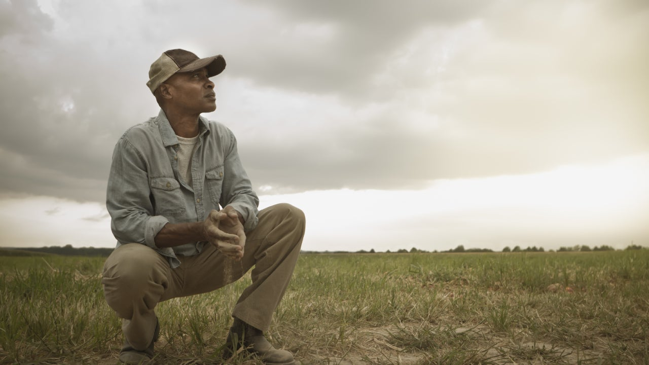 An African American farmer crouches in a devastated patch of farmland after a disaster.