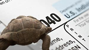 Tax laggards can still file for free