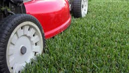 8 ways to save money on costly lawn care
