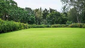 Be shrewd when buying 'raw' land