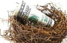 Nest with money © zimmytws - Fotolia.com
