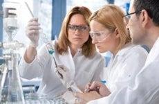 Chemists working in laboratory