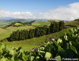 The Portuguese Azores