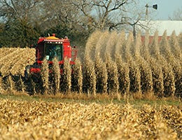Nebraska © Weldon Schloneger/Shutterstock.com