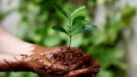 Investing in socially responsible companies
