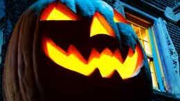 Halloween horror stories