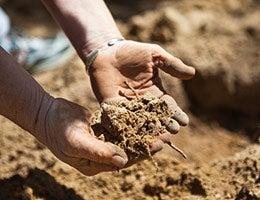 Soil conservation © forestpath/Shutterstock.com
