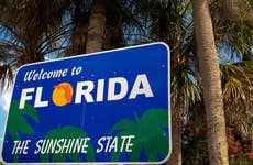 """A """"Welcome to Florida"""" sign stands in front of a palm tree"""