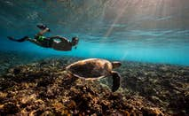 Man snorkling with a sea turtle on summer vacation