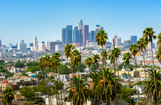 view of Los Angeles, CA city skyline with palm trees