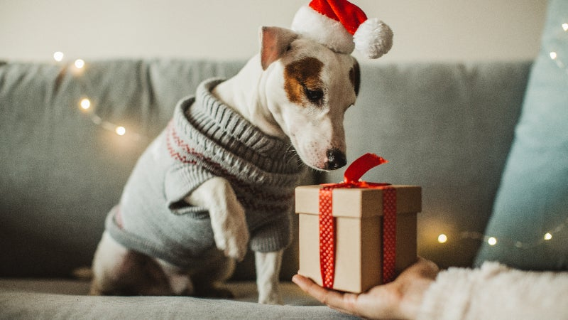 How Much Should You Spend On Your Holiday Gifts?