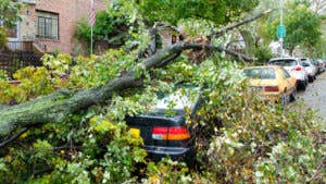Does car insurance cover hurricane damage?