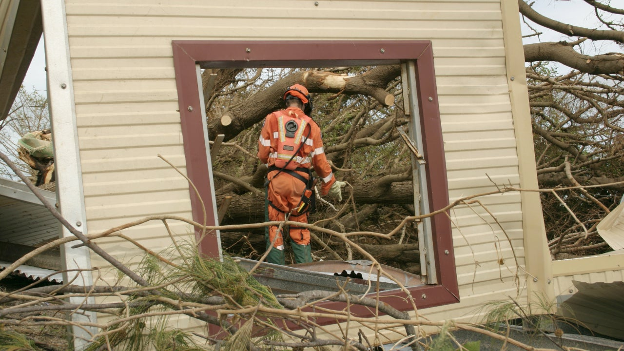 emergency worker in safety clothing cuts fallen trees with chainsaw (framed through fallen window)