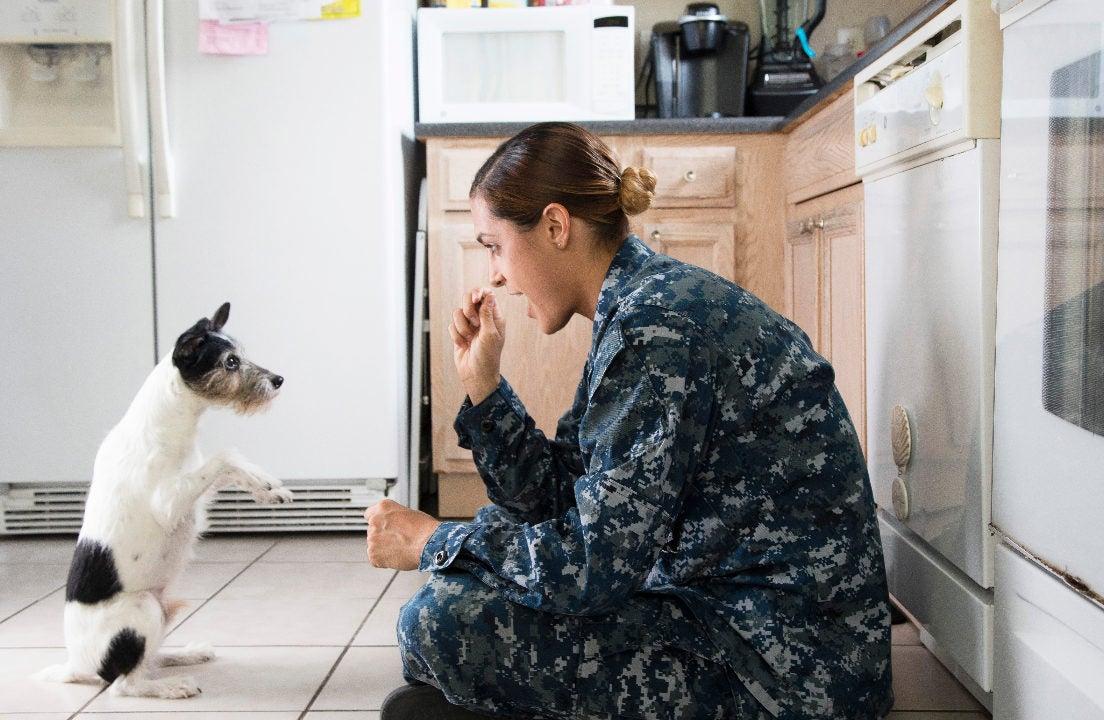 Navy Federal Credit Union Savings Account Rates Bankrate