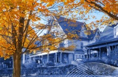 Image of houses behind a tree with fall-colored leaves.