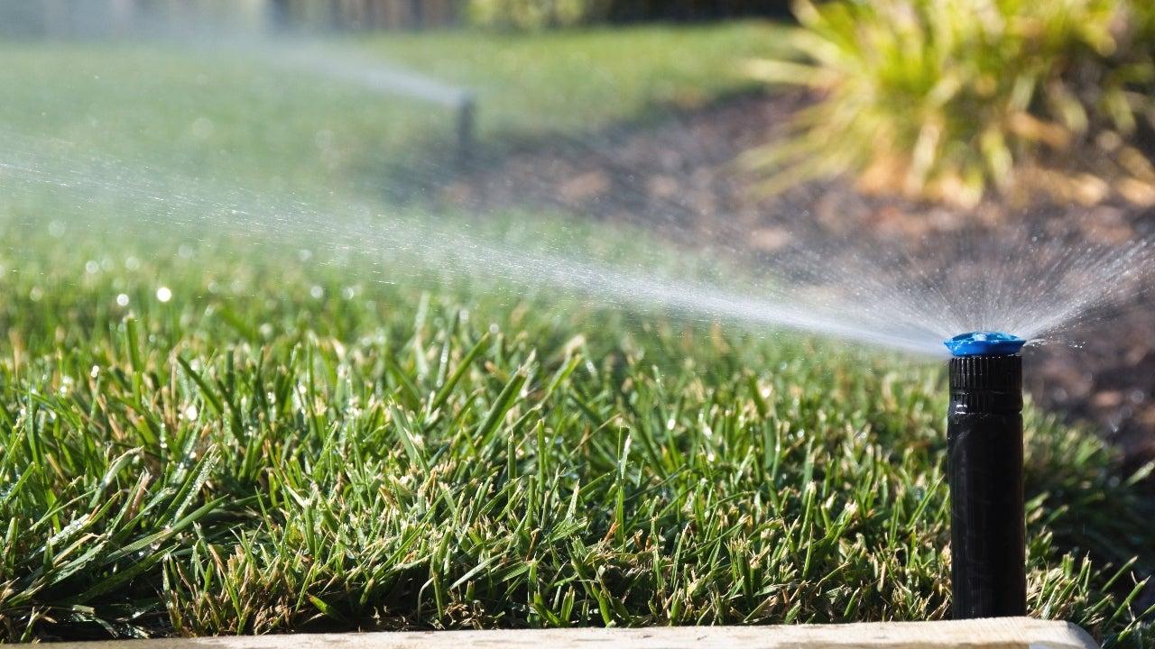 A lawn sprinkler watering the yard