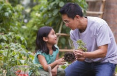 An Asian father is gardening with his little daughter.