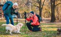 An older couple is out for a hike and taking a break to play with their Golden Retriever.