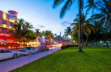 Streets of Miami with palm trees lining the sidewalks and neon lights on the storefronts.