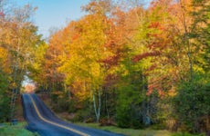 Nice rural drive in West Virginia surrounded by trees with changing leaves.