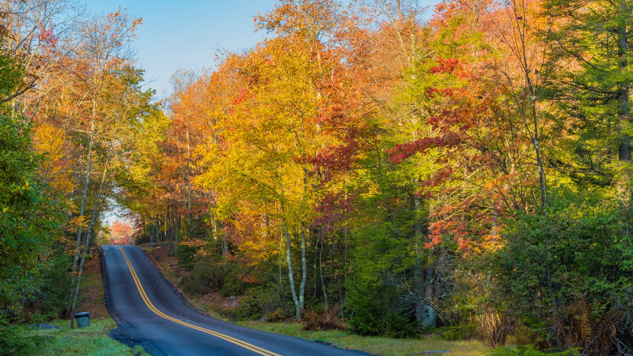 Cheapest Car Insurance in West Virginia 2021 | Bankrate