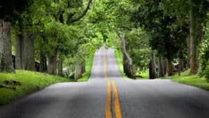 Best cheap car insurance in Lexington for 2021