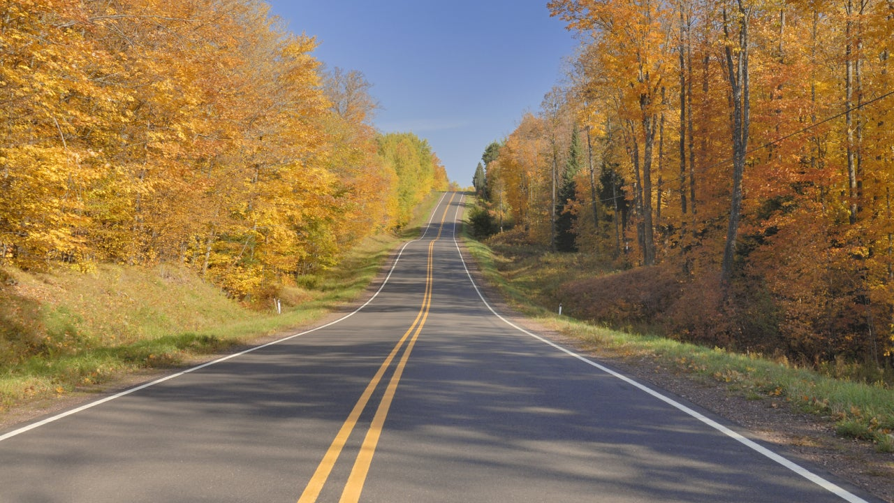 Tree lined road in Michigan's upper peninsula