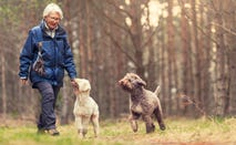 Senior woman exploring scenic environment with dogs