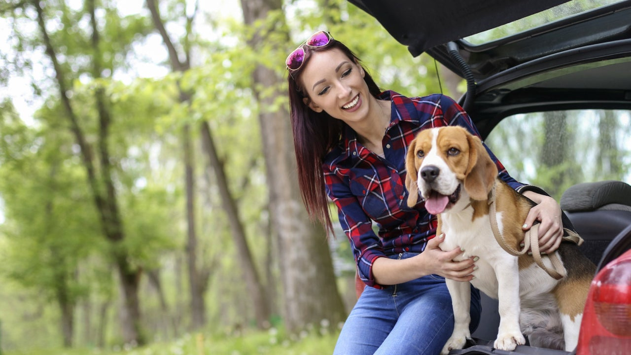 Young woman on a road trip with her dog