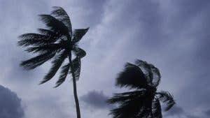 Florida windstorm insurance