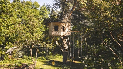 Does homeowners insurance cover treehouses?