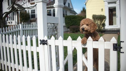 Does home insurance cover fences?