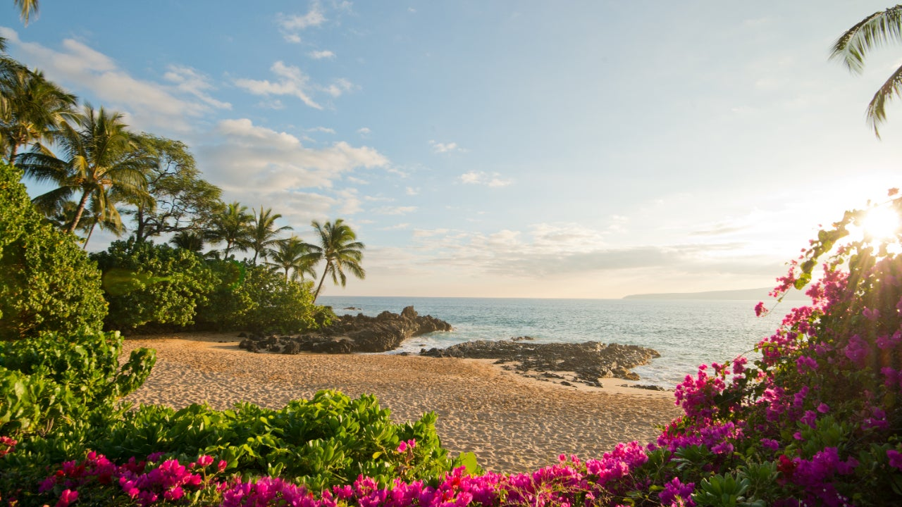Photo of secluded beach surrounded by trees and flowers - Maui, Hawaii