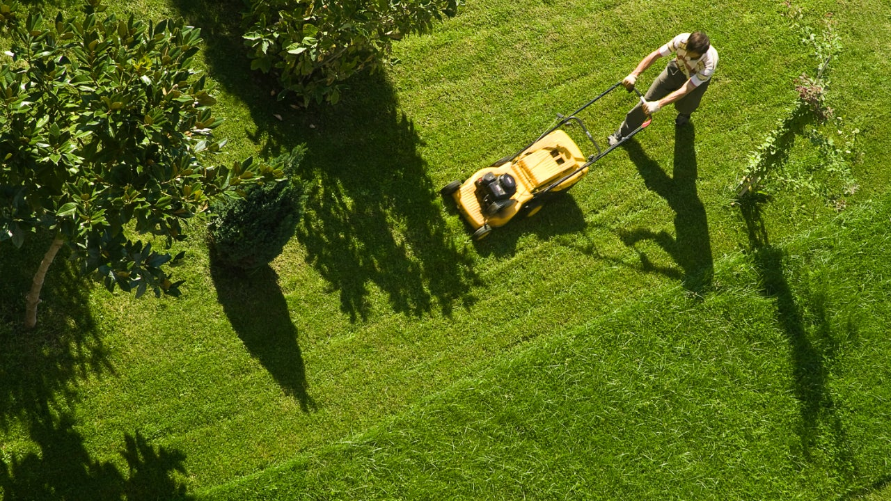 Young person mowing the lawn