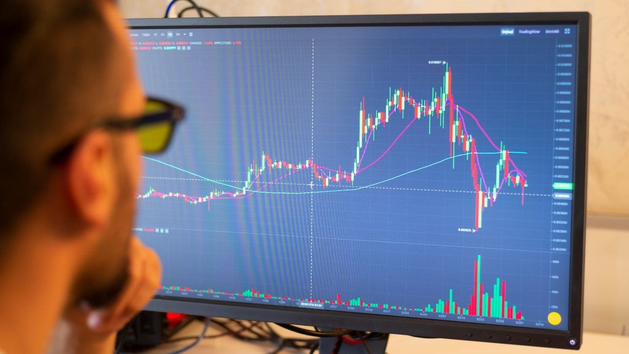 What causes a stock's price to go up or down?