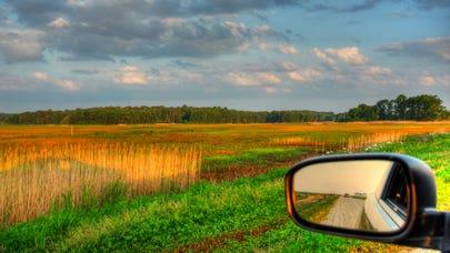 Delaware car insurance laws