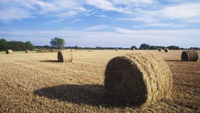 Texas Farm Bureau Insurance review