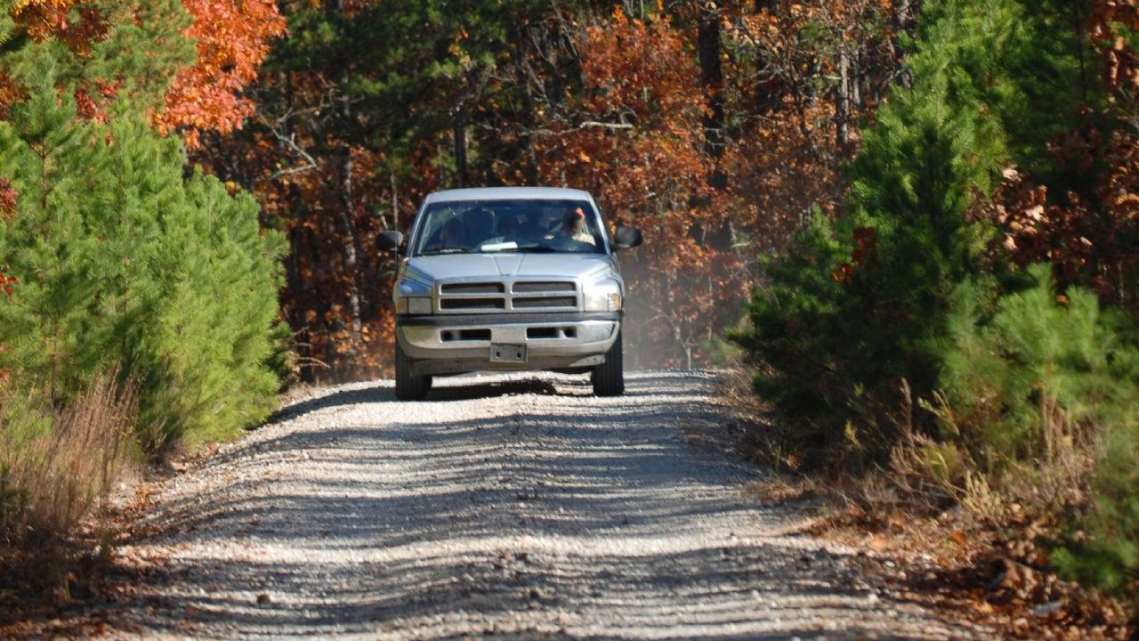Country Road Through Autumn Paradise