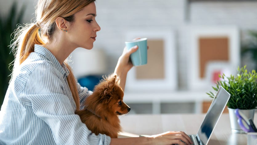 Woman sits at computer with dog