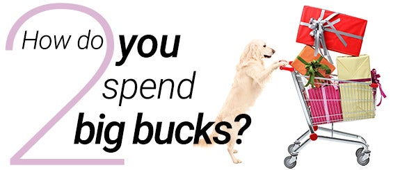 How do you spend big bucks?