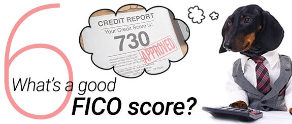 What's a good FICO score? | Dog: © Tania Kolinko/Shutterstock.com